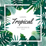 Summer tropical green palm leaves and jungle plants. Cover design template background for wedding card, advertise spa, web site. - 226862651