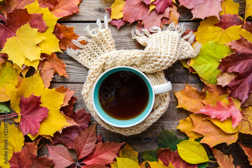 Autumn picture with a cup of tea in a scarf in autumn leaves