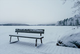 Bench at the edge of the frozen lake - 226878220
