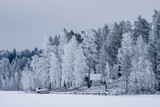 winter landscape with solitude house - 226878289