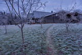 Countryside house in a frozen forest - 226879263