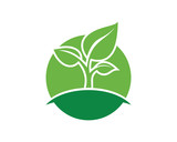 Growing New Shoots Sign Symbol Agriculture Company logo Vector - 226892005