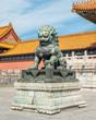 China-Dog-3954