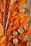 autumn leaves on wood background - 226974015