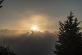 Sole dietro la nebbia - 227052669