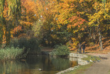 Autumn city park. Park in the fall. Bright autumn trees in the park. - 227057402