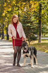 young redhead girl on a walk in the park with her pet. shepherd on the walk © izida1991