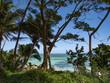 Quadro Fiji, panorama selvaggio e di natura delle isole ed atolli incontaminati
