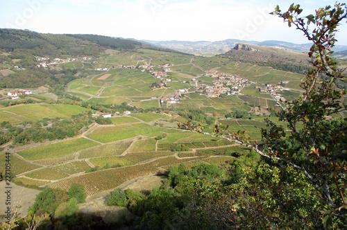 szeroka panorama wsi wina MÃ ¢ lac kraju za zielone gałęzie