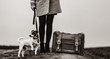 young beautiful woman with suitcase and dog standing on the road. Image in black and white color style