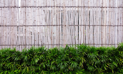 Close up of wall made of vintage bamboo fence © krung99