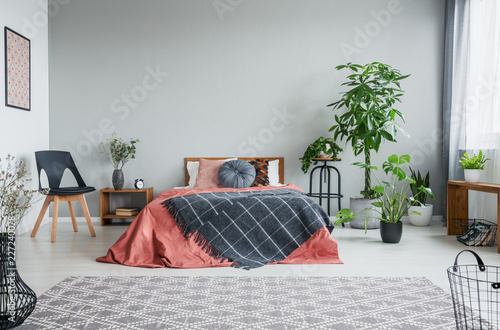Leinwandbild Motiv Patterned blanket on red bed in grey bedroom interior with wooden armchair and plants. Real photo
