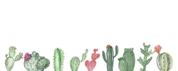 Watercolor banner of multi-colored cacti © Natalia