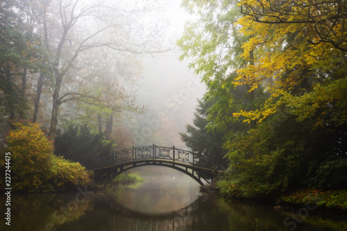 Scenic view of misty autumn landscape with beautiful old bridge in the garden with red maple foliage. - 227244475