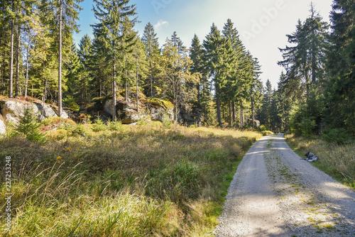 Wanderweg im Wald Felsblöcke im Fichtelgebirge Ochsenkopf
