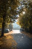 Lindenstraße im Herbst