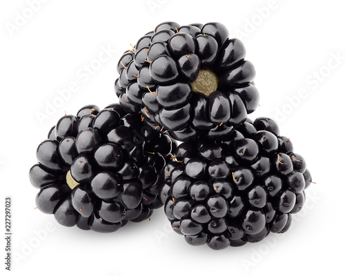Leinwanddruck Bild blackberry isolated on white background, clipping path, full depth of field