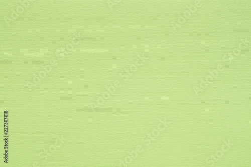 Foto Murales bright green paper texture background. colored cardboard fibers and grain. empty space concept.
