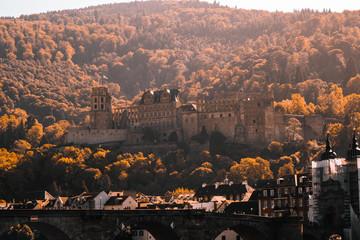 Heidelberger Schloss im Herbstlaub © Bjrnrs