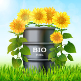 Metal barrel with bio fuel and sunflowers on the green grass background vector. Biofuel plants concept