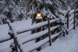 Vintage lamp in frozen forest  - 227343832