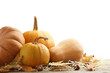 Orange pumpkins with dry leafs, acorns and chestnut on grey wooden table