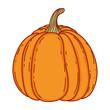 Pumpkin cartoon isolated - 227385065