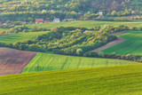 Rural landscape in Southern Moravia, Czech Republiс