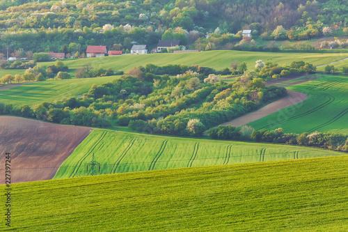 Rural landscape in Southern Moravia, Czech Republiс