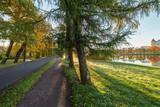 path in autumn park - 227412447