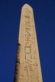 highest monolyth from Egypt karnak - 227430610