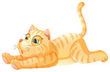 A lazy cat on whiye background - 227450606