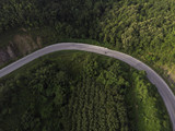 curve road and forest aerial view