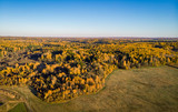 View from the height of the beautiful autumn forest