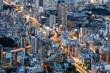 View of Tokyo city from Mori Tower, Roppongi Hills, Tokyo, Japan