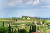 Tuscany landscape with green hills and vineyards