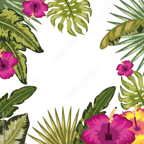 Tropical leaves and flowers background - 227576842