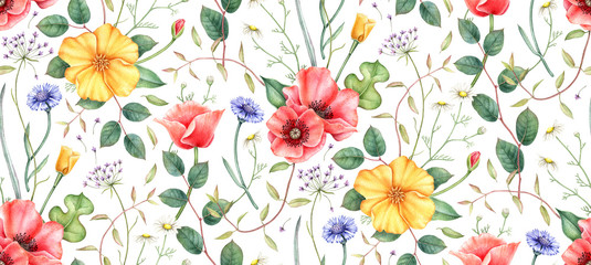 Seamless pattern with wildflowers: poppy, cornflower, chamomile and herbs. Hand drawn watercolor illustration for fabric, wrapping, wallpapers and other designs. Floral botanical print. © evdakovka
