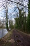 chemin au bord de la rivière  - 227617443