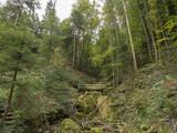 Reigoldswil en Suisse au fond de la vallée de Frenke. La montée le long du sentier des cascades.