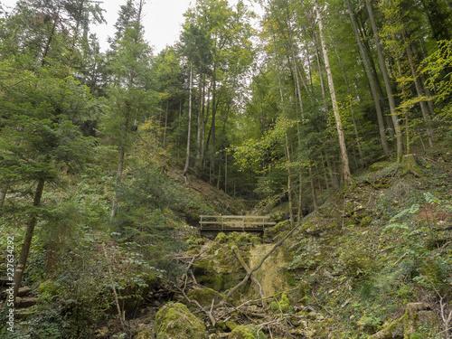 Reigoldswil en Suisse au fond de la vallée de Frenke. La montée le long du sentier des cascades. - 227634292