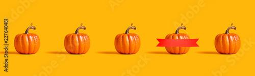 Leinwanddruck Bild Autumn orange pumpkins on an orange background