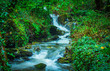 Waterfall at Harmby Falls in the forest - 227658400