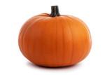 One orange pumpkin - 227659270