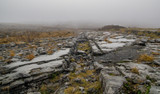 Foggy day in the rocky burren of western Ireland