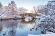Central Park. New York. USA in winter covered with snow