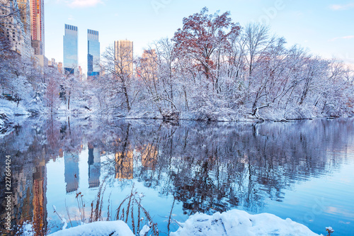 Central Park. New York. USA in winter covered with snow - 227664424
