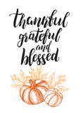 Season Background. Greeting card with Ink hand drawn pumpkins. Autumn harvest elements composition with brush calligraphy style lettering. Vector illustration. - 227698225