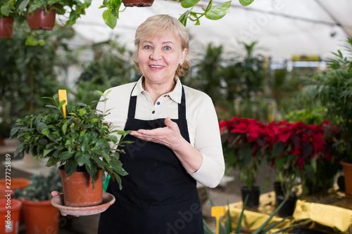 Foto Murales Woman gardener is standing with flower near plants