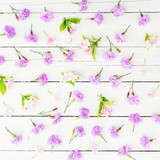 Pink flowers on white wooden background. Flat lay, Top view. Flowers texture.